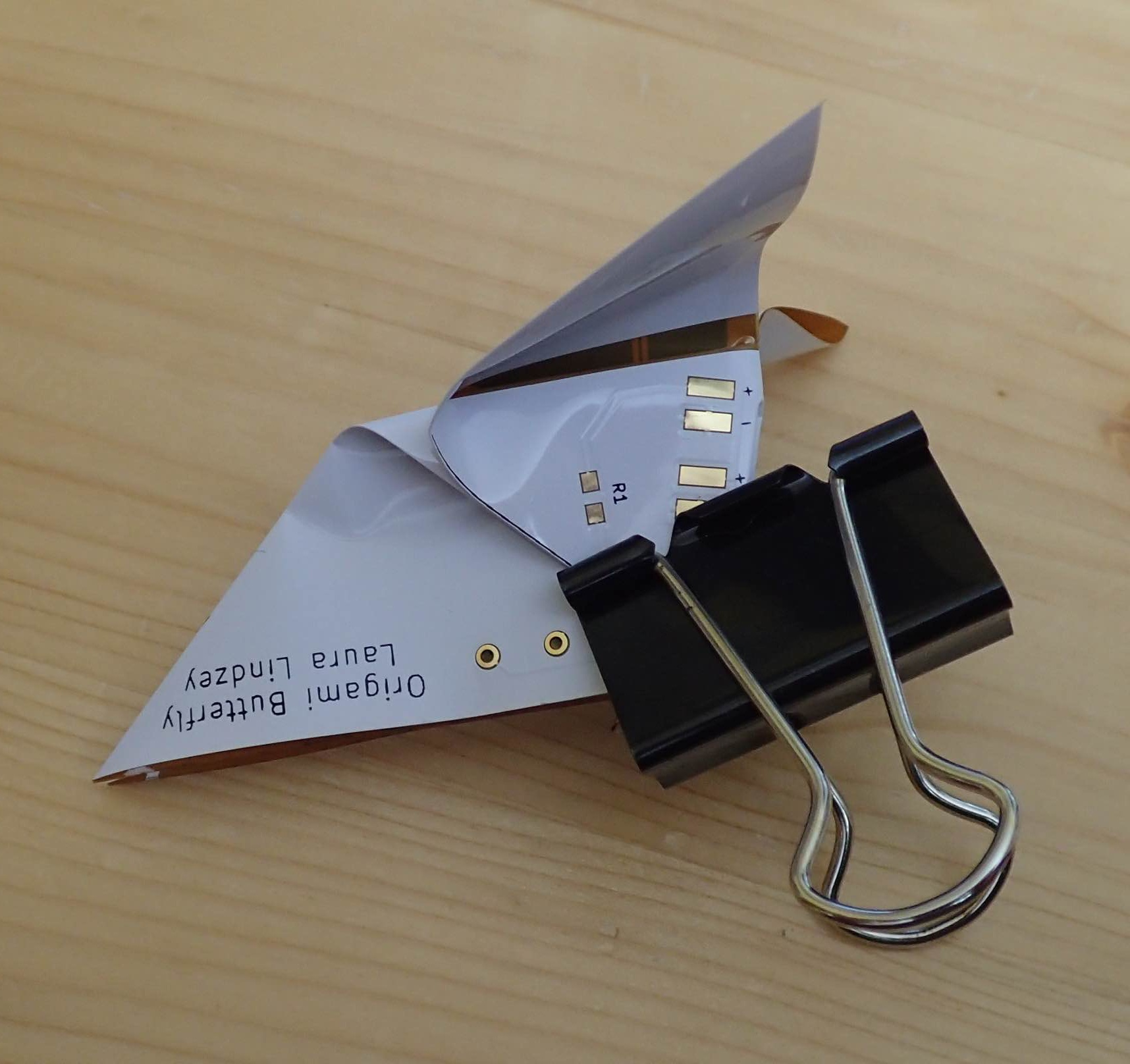 Using a binderclip to help train the wing creases.